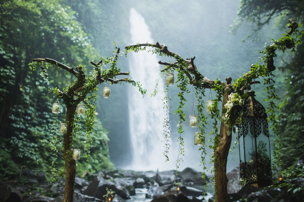 zoom virtual wedding rainforest background image