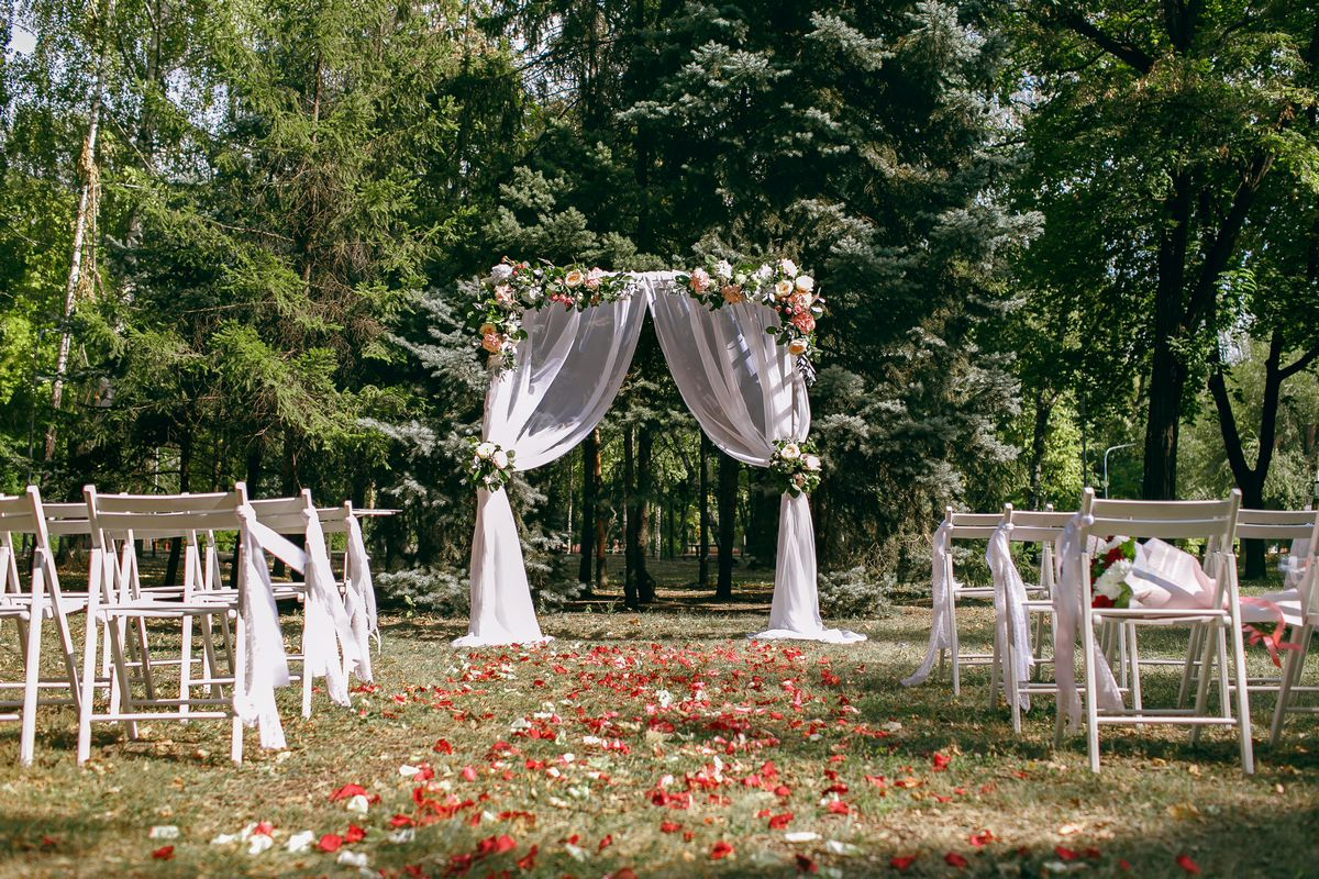 zoom virtual wedding forest background image